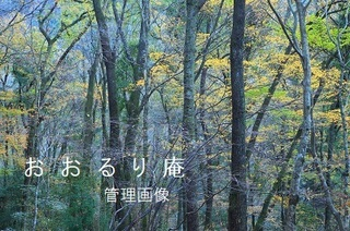 2019-1130-1・ブ.JPG