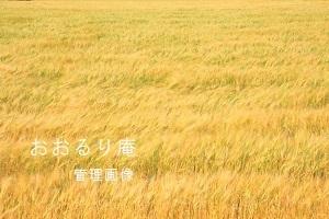 2020-0424-2・ブ.JPG